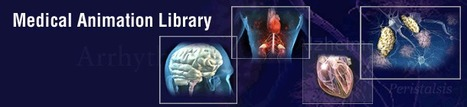 Medical Animation Library | Science Tools for School | Scoop.it
