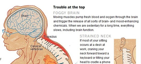 The health hazards of sitting | Power :: Endurance :: Fitness | Scoop.it