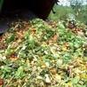 Hazardous wastes management