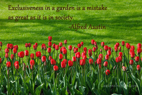 Quote by Alfred Austin | The Muse | Scoop.it