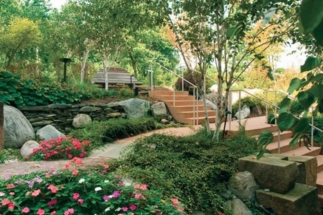 Green Spaces That Actually Calm the Mind and Body   Sustainable Futures   Scoop.it