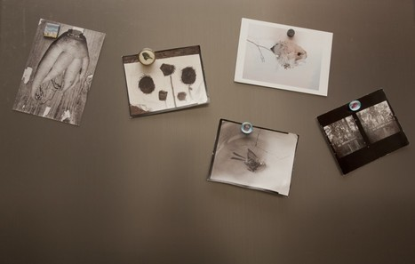 Blog   the POSTCARD collective   Photography Now   Scoop.it