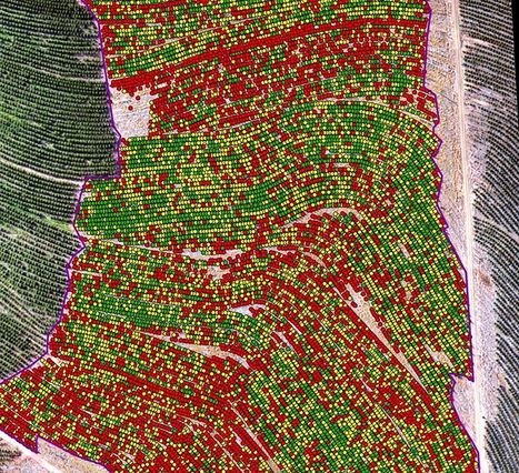 What Happens When You Combine Artificial Intelligence and Satellite Imagery | geoinformação | Scoop.it