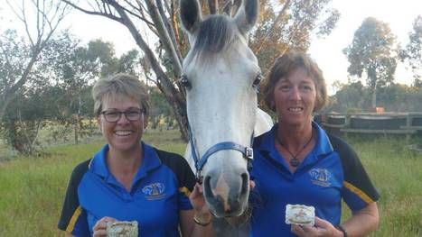 Praise for Wagin's Quilty continues - Wagin Argus   Endurance Riding   Scoop.it