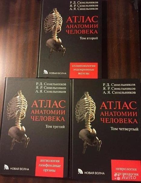 атлас анатомии человека синельников скачать бесплатно pdf