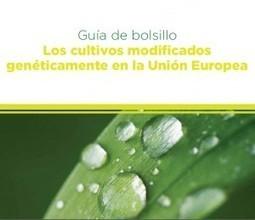 Guia de Bolsillo Los cultivos modificados genéticamente en la Unión Europea | Transgénicos | Plant Gene Seeker -PGS | Scoop.it