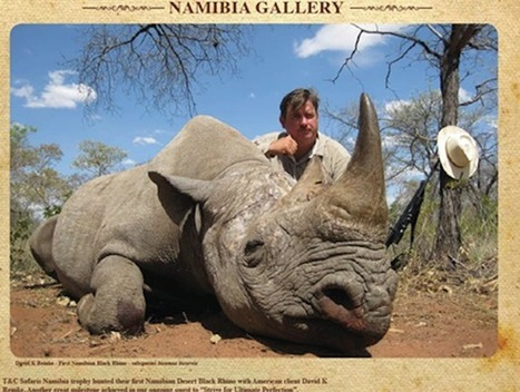 U.S. to Endangered Species Hunters: 'Bring Your Trophies Right on In!' | Rhino poaching | Scoop.it