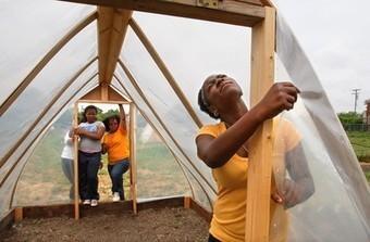 Urban Farming Is Growing a Green Future | Community Gardening | Scoop.it