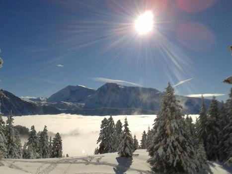 Montagne : les professionnels affichent leur optimisme pour les Vacances de Noël 2013   OT et régions touristiques de France   Scoop.it
