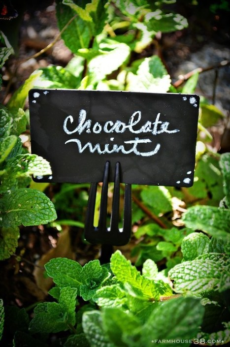 Chalkboard Plant Markers from Old Gift Cards | Green RVing | Scoop.it