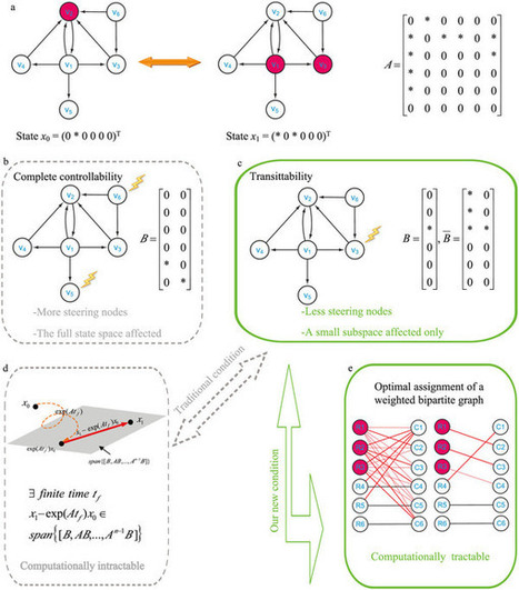 Transittability of complex networks and its applications to regulatory biomolecular networks : Scientific Reports : Nature Publishing Group | Dynamics on complex networks | Scoop.it