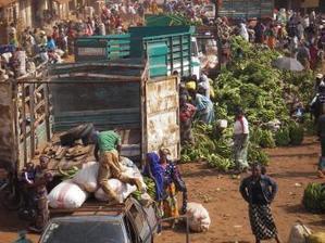Depuis 5 ans, les prix mondiaux des produits alimentaires baissent | Questions de développement ... | Scoop.it
