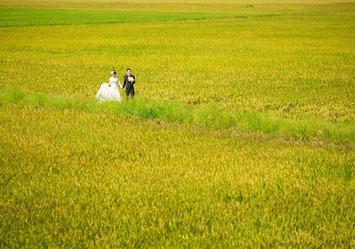 Japanese couple's photos capture beautiful landscapes | VietNamNet | Kiosque du monde : Asie | Scoop.it