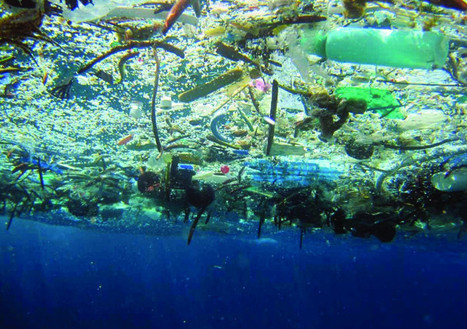 The Truth About Garbage Patches | Marine Litter | Scoop.it