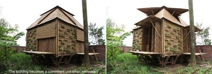 Blooming Bamboo Home: A Modular Solution for Emergency Housing | Social studies | Scoop.it