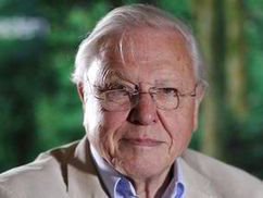 Foreign aid spent on food is madness, says David Attenborough | UK | News | Daily Express | News round the Globe especially unacceptable behaviour | Scoop.it