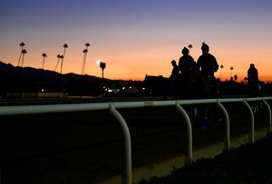 Horse Racing Integrity Push Continues Despite Obstacles | TheHorse.com | CALS in the News | Scoop.it