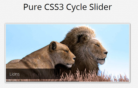 A Pure CSS3 Cycling Slideshow | Smashing Coding | Slideshow & Carousel Jquery | Scoop.it