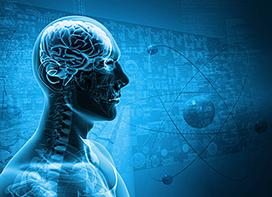 Researchers take Vital Step toward Creating Bionic Brain | shubush augment | Scoop.it