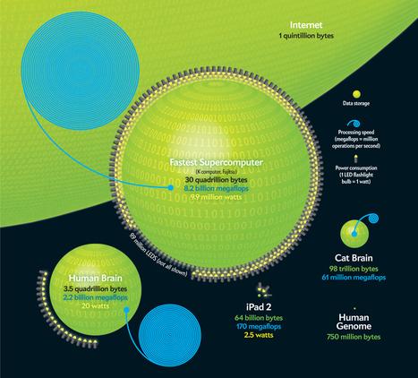 Computers versus Brains - Infographic- Scientific American | UDL & ICT in education | Scoop.it