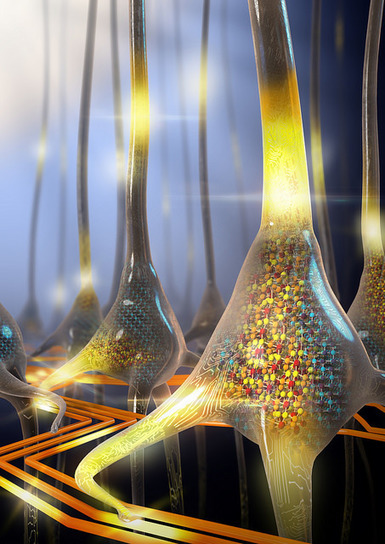 IBM scientists imitate the functionality of neurons with a phase-change device | The virtual life | Scoop.it