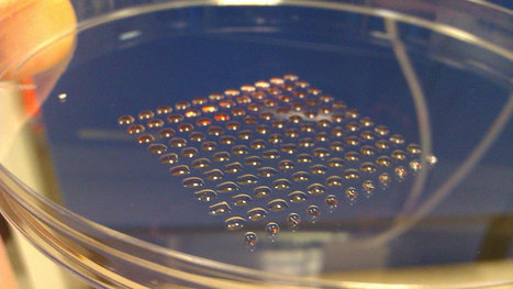3D-printing human embryonic stem cells for drug testing, future replacement of human organs | Amazing Science | Scoop.it