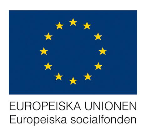 IT-lyftet & IT-piloterna - Transnationalitet | Folkbildning på nätet | Scoop.it