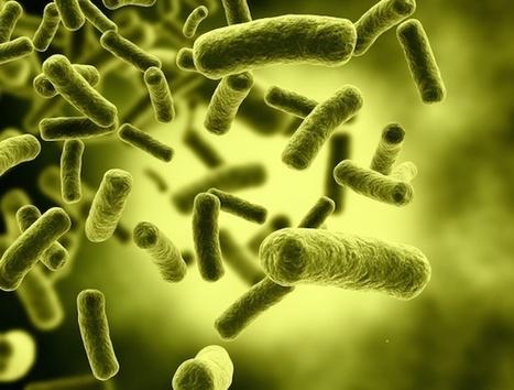 The Top Infectious Disease Stories of 2015 | Hepatitis C New Drugs Review | Scoop.it