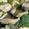 T J's Lawncare & Landscaping