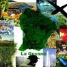 Le Tourisme en Guyane