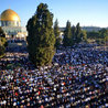 Muslims find Islam and not Israel ruining the Temple Mount!