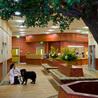 Animal Veterinary Clinic Riverdale