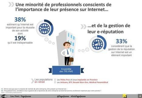 La non transformation digitale des PME et TPE françaises   Usages professionnels des médias sociaux (blogs, réseaux sociaux...)   Scoop.it