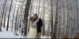 Un couple fait filmer son mariage par son chien | CaniCatNews-actualité | Scoop.it