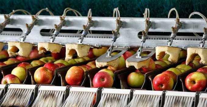 Filières agroalimentaires : vous avez dit compétitivité?