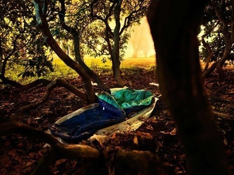 Sleep as a Hobo at Sweden's Homeless Experience Hotel | Strange days indeed... | Scoop.it