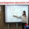(De)constructing bilingualism
