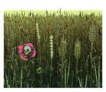 Soil fertiliser | History Curiosity | Scoop.it
