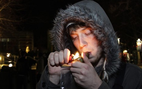 Colorado prepares to become 'Amsterdam of America' as state legalises cannabis | Alcohol & other drug issues in the media | Scoop.it