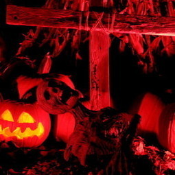 Season of Shadows: Gone Into the Night | Halloween | Scoop.it