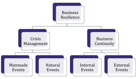 What is Business Resilience? | Cultural heritage protection | Scoop.it