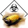 Monsanto: Cultivator of Deciet
