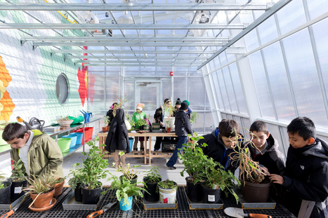 The Edible Schoolyard, Where Students Farm, Cook, And Learn | Moove it !  On se bouge ! | Scoop.it