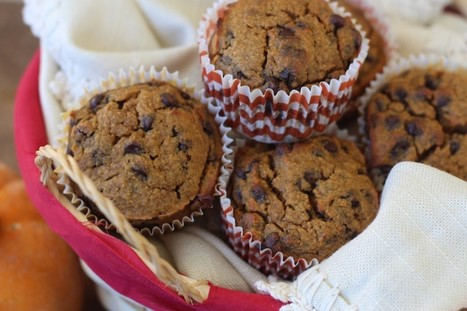 PaleOMG – Paleo Recipes – Pumpkin Chocolate Chip Muffins | Fabulous Chefs, And The Last Word in Today's Cuisine | Scoop.it