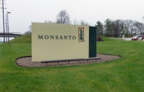 Pesticides: plainte contre Monsanto et l'Autorité européenne de sécurité des aliments   Nouvelle Donne   Scoop.it