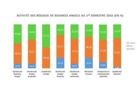 Quelle est la situation des Business Angels en France ? | Business Angels actualités | Scoop.it