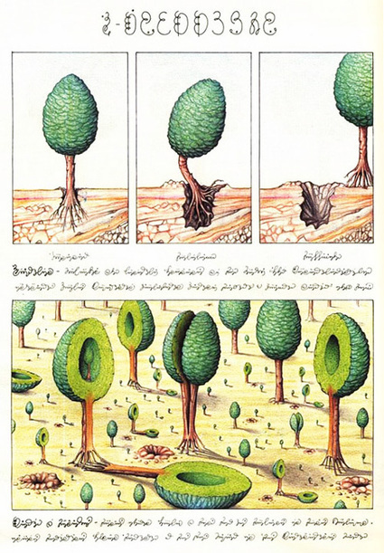 Codex Seraphinianus: History's Most Bizarre and Beautiful Encyclopedia, Brought Back to Life | The Landscape Café | Scoop.it