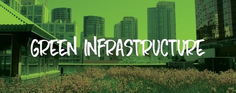 Green Infrastructure: Best Practices for Cities | Farming, Forests, Water, Fishing and Environment | Scoop.it