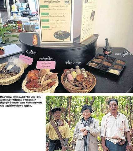 The roots of health care | Bangkok Post: business | forest gardening | Scoop.it