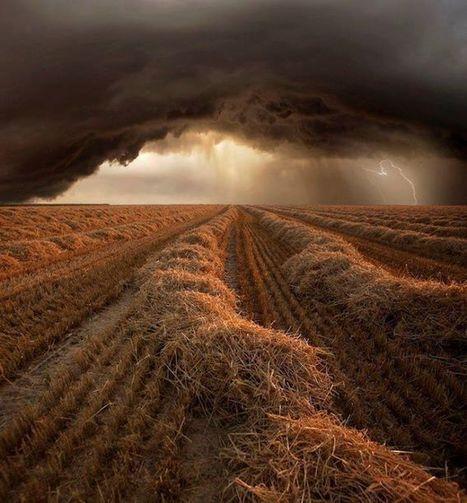 Cloud, nuages | The Blog's Revue by OlivierSC | Scoop.it